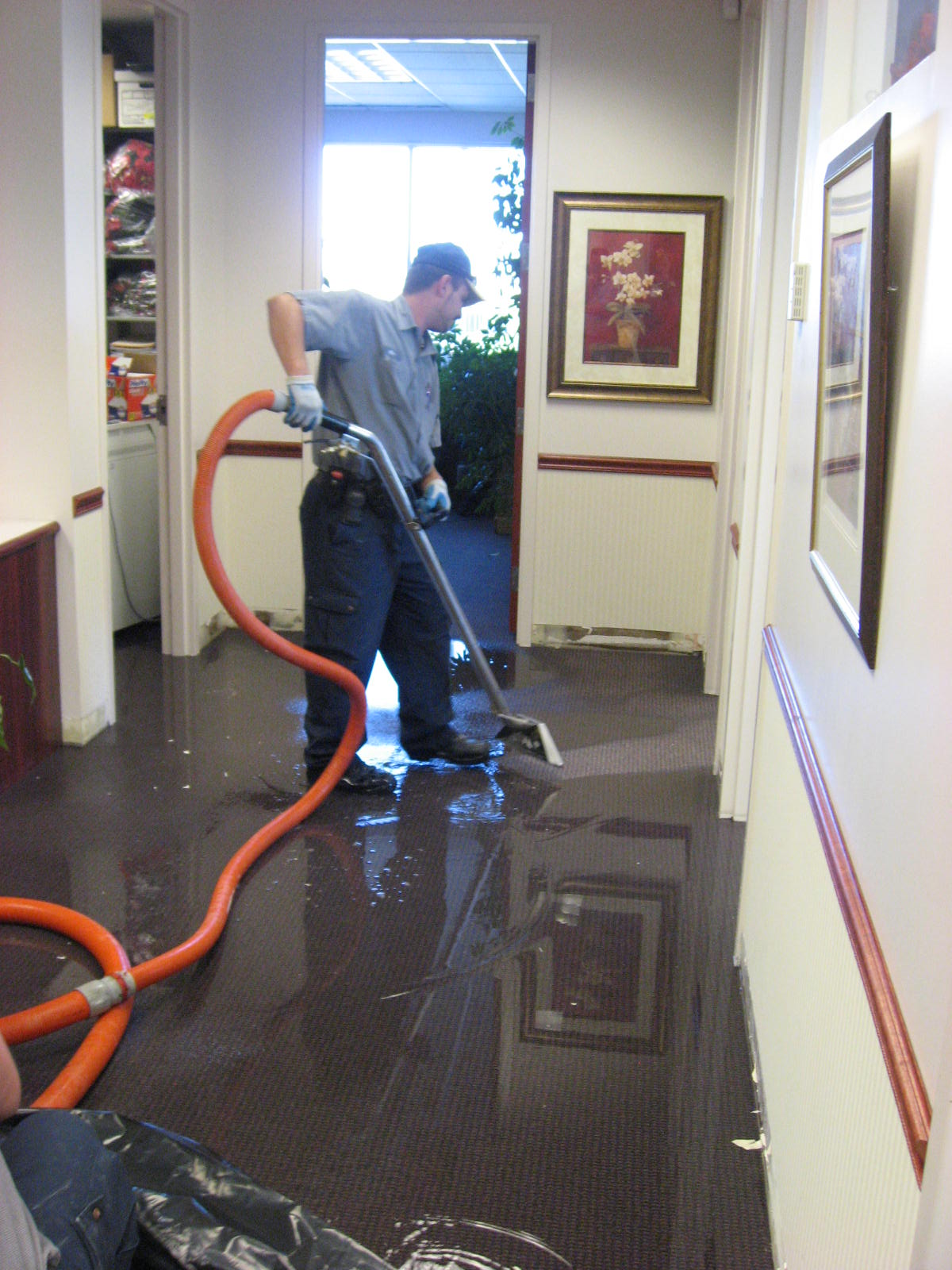Water Mitigation Services In Orlando Fl Water Damage Local